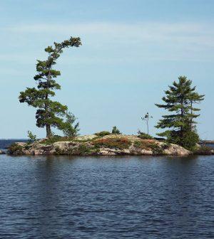 walleye ontario lakes warming