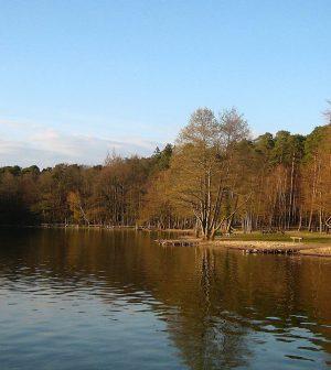 aquatic fungi Lake Stechlin