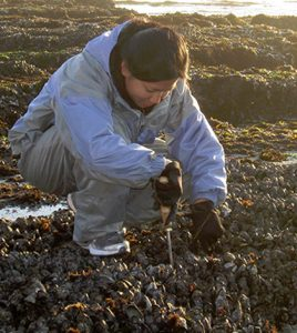 levels of microcystin shellfish san francisco bay