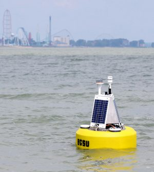 The Bowling Green State University data buoy in the Sandusky Bay near Cedar Point. (Credit: Bowling Green State University)