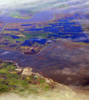 California Water
