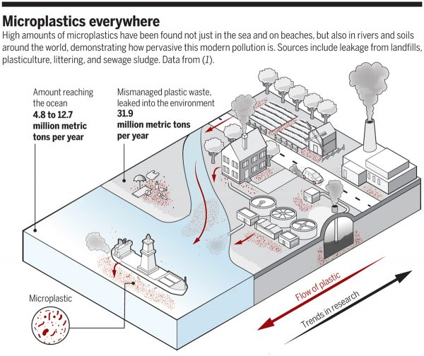 Microplastics Invade Ecosystems