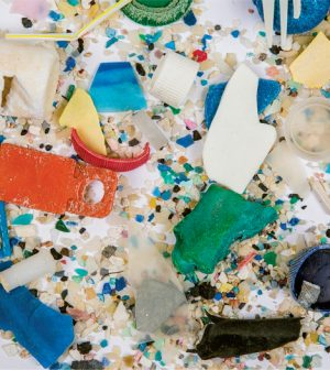 microplastic invades ecosystems