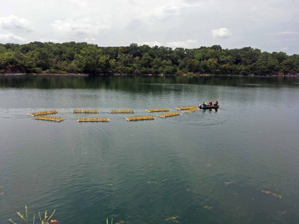 Floating Islands Used to Improve Water Quality at Racine Park