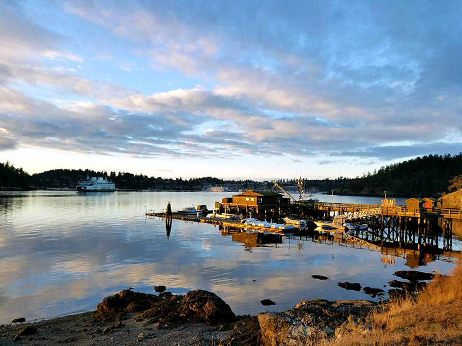 Friday Harbor Laboratories