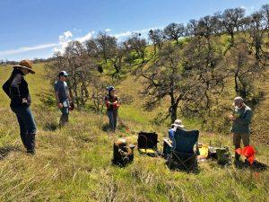 Blue Oak Ranch Reserve