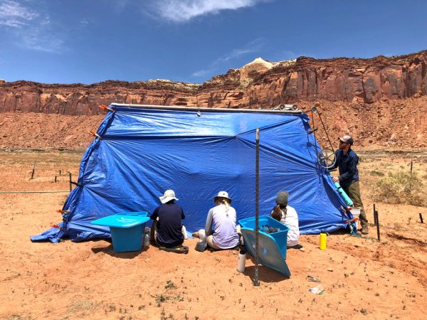 Canyonlands research