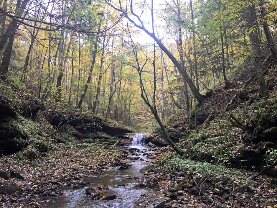 Appalachian Streams mining recovery